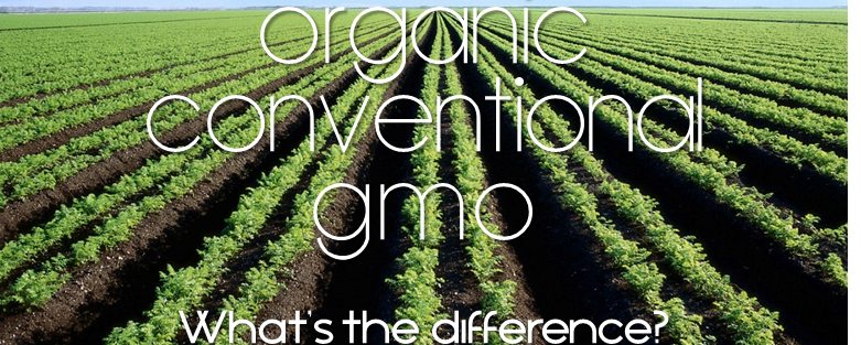 Organic/ Conventional/ GMO food – What's the Difference?
