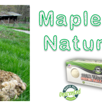 MapleHillNaturalsFeaturedImage