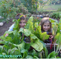 DIYBackyardFarm on Hip and Healthy Kids