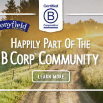 B Corp Featured Image